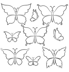 Butterflies contours vector