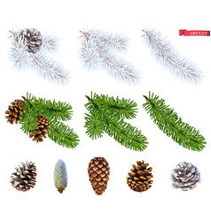 christmas trees and pine cones 3d realistic icon vector image