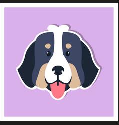 doggie face bernese mountain dog flat design vector image