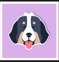 Doggie face of bernese mountain dog flat design vector