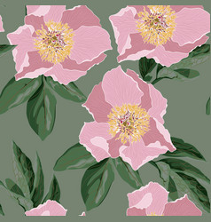 pink peonies with green leaves vector image