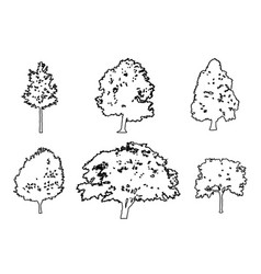 Tree collection drawing engraving vector