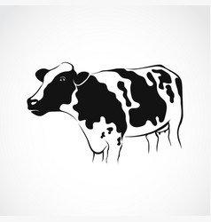 Cow design on white background vector