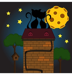 black cat under moon vector image