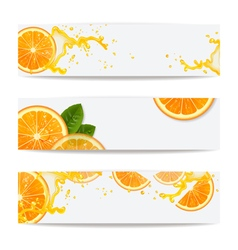 Banners with background of oranges vector
