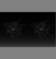 collection of realistic cobweb spider web vector image