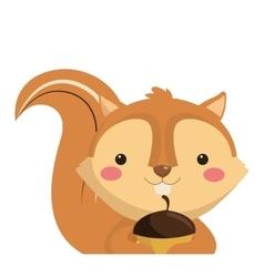 Cute squirrel cartoon icon vector
