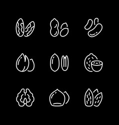 set line icons nuts vector image