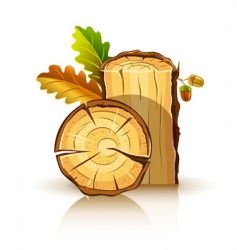 oak tree icons vector image