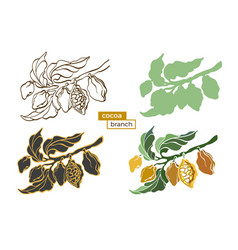 cocoa set branches 2 vector image