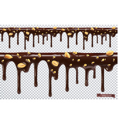 dripping chocolate with peanut nuts melt drip 3d vector image