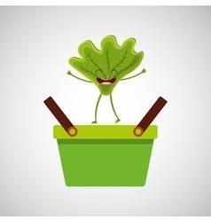 Green basket market and happy lettuce vector