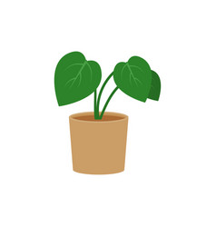 Philodendron potted flat icon indoor plant flower vector