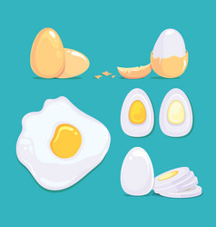 raw and cooked eggs in different conditions vector image