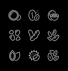 set line icons nuts and seeds vector image