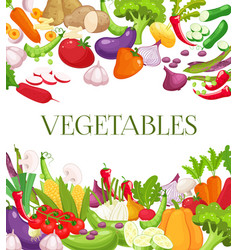 vegetable and healthy food menu poster fresh vector image
