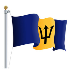 waving barbados flag isolated on a white vector image