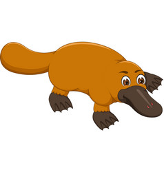cute platypus cartoon crawl with smile vector image
