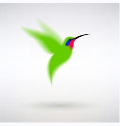 green hummingbird vector image