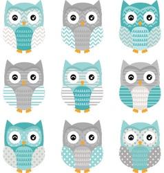 Aqua Grey Cute Owl Collections vector image vector image
