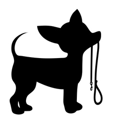Chihuahua Leash vector image vector image