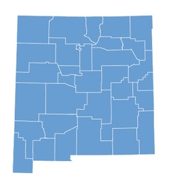 State map of New Mexico by counties vector image vector image