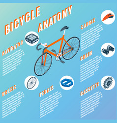 Bicycle anatomy concept infographic set of vector