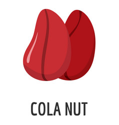 cola nut icon flat style vector image