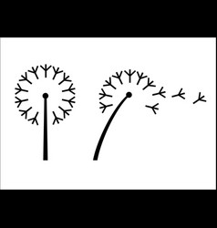 Dandelion flower styling vector