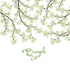 decoration of pine branches vector image