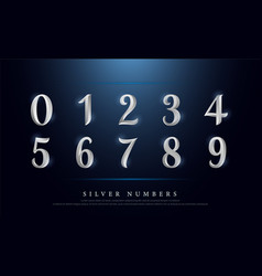 elegant numbers silver colored metal chrome vector image