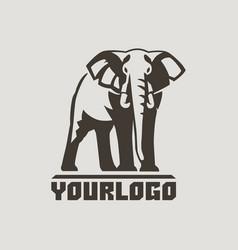 elephants logo sign vector image