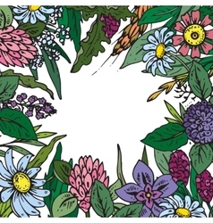 Frame with wildflowers and herbs vector