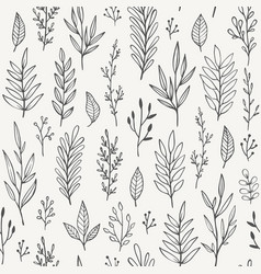hand drawn plants branches leaves pattern vector image