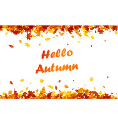 hello autumn background with orange leaves vector image