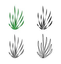 Seaweed and algae logo set vector
