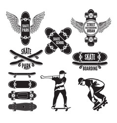 skating and labels vector image