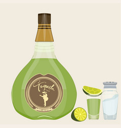 tequila set flat style design vector image