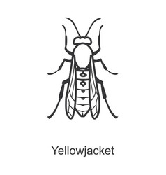 Yellow bee iconline icon isolated vector