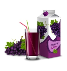 Grape juice set vector image vector image