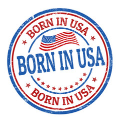 born in usa sign or stamp vector image