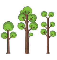 cartoon trees on white vector image