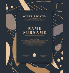 certificate template for posting your information vector image