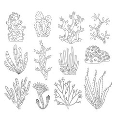 Marine algae ocean seaweed and corals silhouettes vector