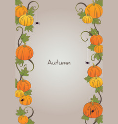 Pumpkin and ivy with spider frame for halloween vector