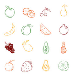 set color sketch fruits icons vector image