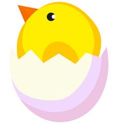 cartoon new born chicken chick icon poster vector image