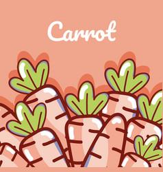 Carrots natural vegetables vector