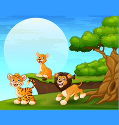 Cartoon tiger and lions playing near the cliff vector