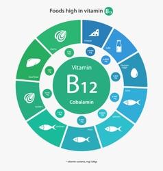 Foods high in vitamin b12 vector